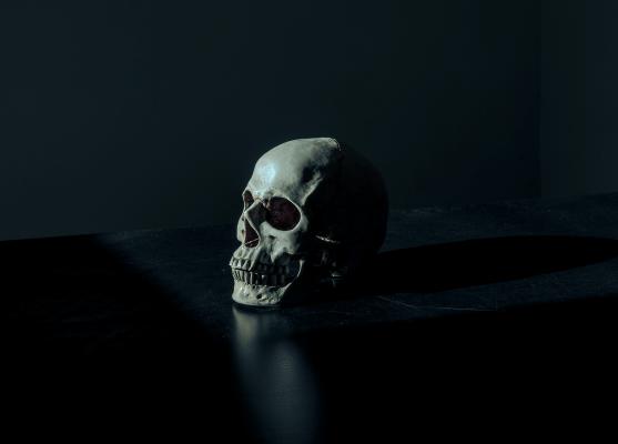 kaukole siaubo pabegimo kambariui